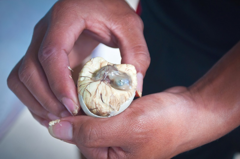 Try Balut egg in the Philippines