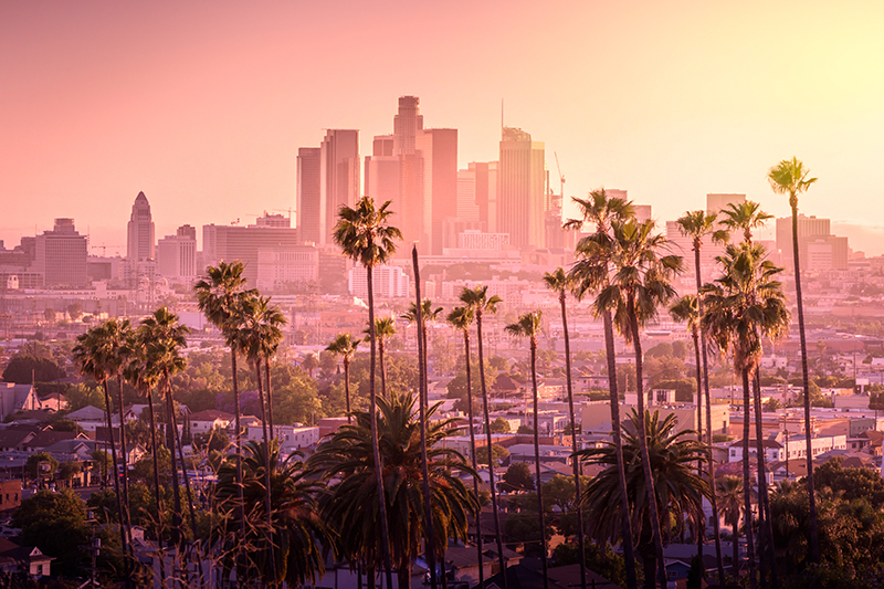 View of LA skyline with palm trees and pink sky