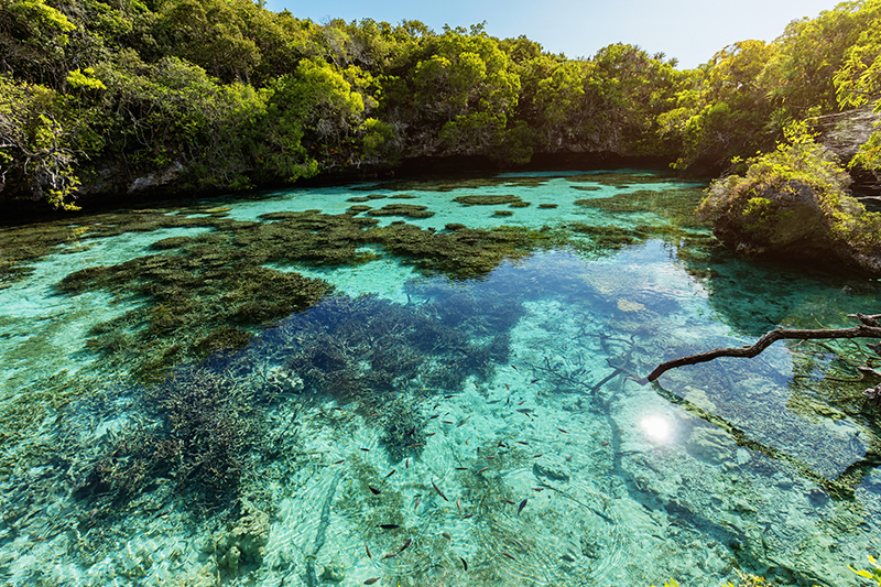 Tropical beauty of New Caledonia with clear water and green forest