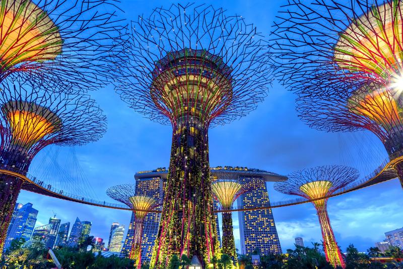 Singapore new age futuristic trees