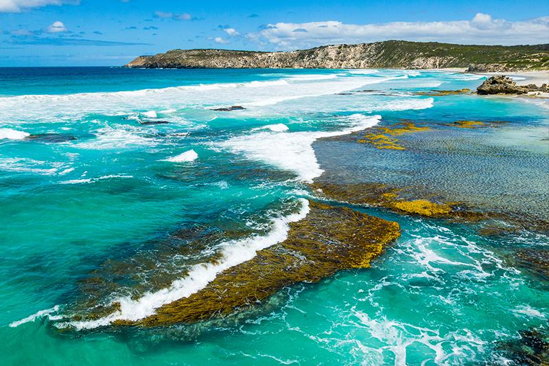 Pennigton Bay - Kangaroo Island - Best Australian Roadtrips