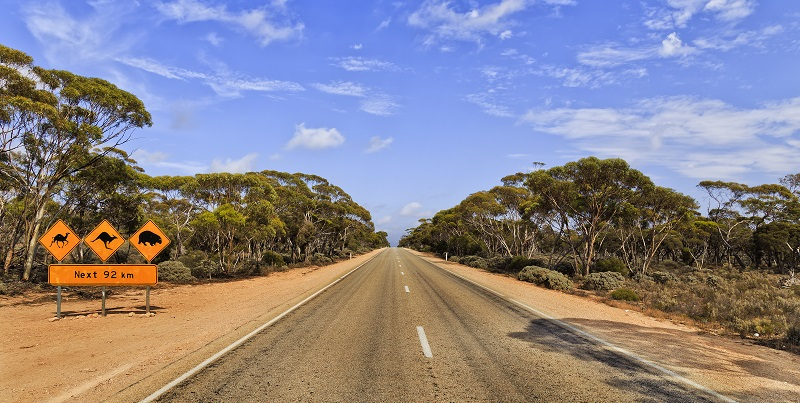 Eyre Highway, South Australia - Outback Road Trip