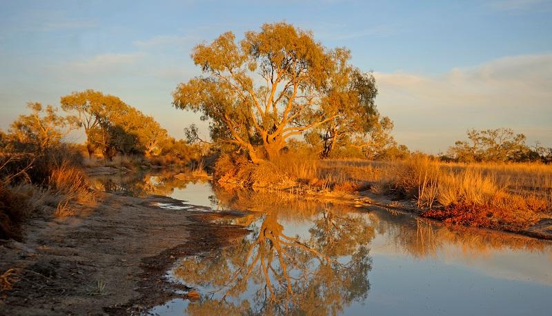 Birdsville, Australia - Outback Road Trips