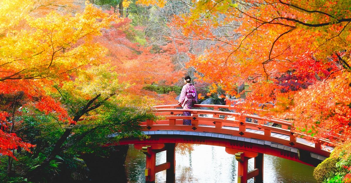 Image result for hokkaido fall