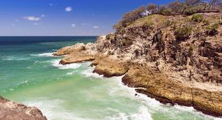 Lone Pine Koala Sanctuary Admission with Brisbane River Cruise