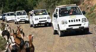 Self-Drive Jeep Safari to South Coast, Palm Beach & Canyons