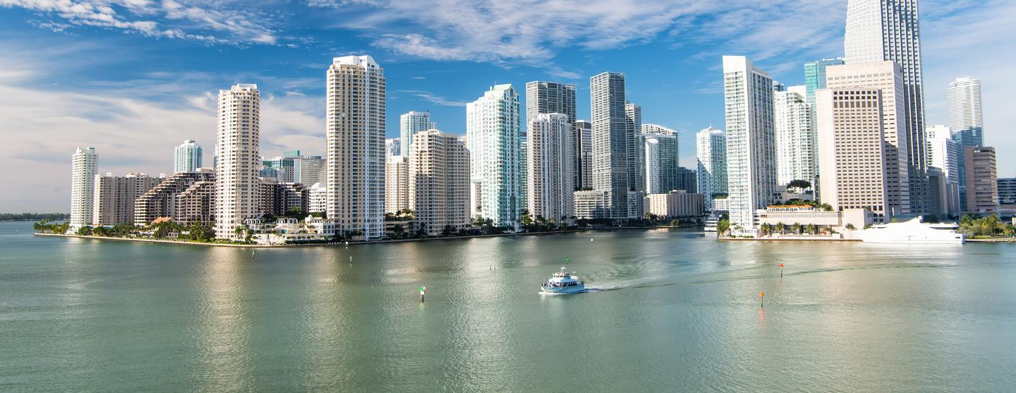 Best Pet Friendly Hotels In Miami From 203night Kayak