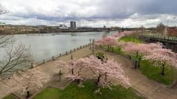 Portland hotels near Tom McCall Waterfront Park