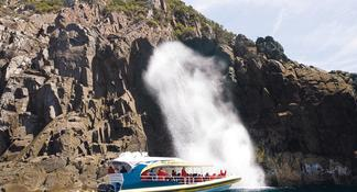 Bruny Island Sightseeing and Food Tour from Hobart Including Guided Lighthouse Tour