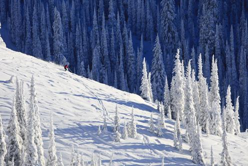 Deals for Hotels in Whitefish