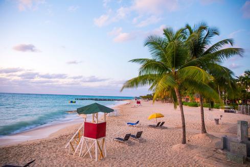 Deals for Hotels in Kingston