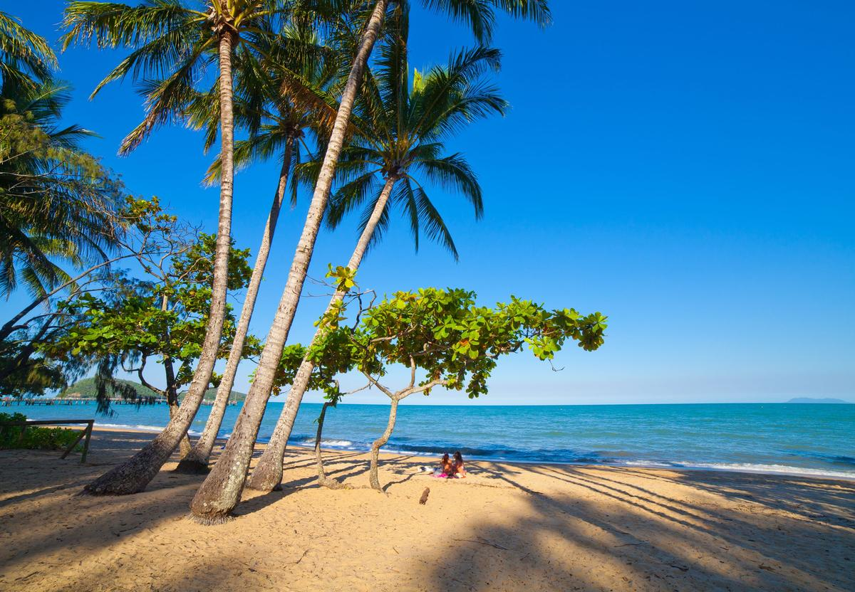 Car Hire In Cairns From 19 Day Search For Car Rentals On Kayak