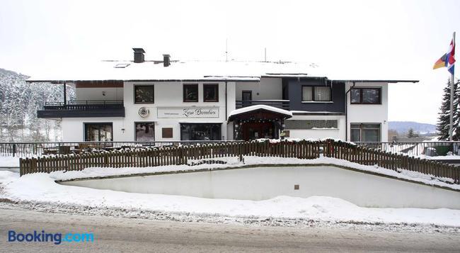 Hotel-Pension Zum Paradies - Willingen - Building