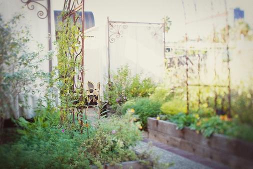 Petit Ermitage - Los Angeles - Outdoor view