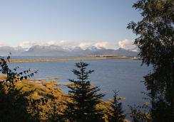 Bay Ave Bed And Breakfast Inn - Homer - Outdoor view