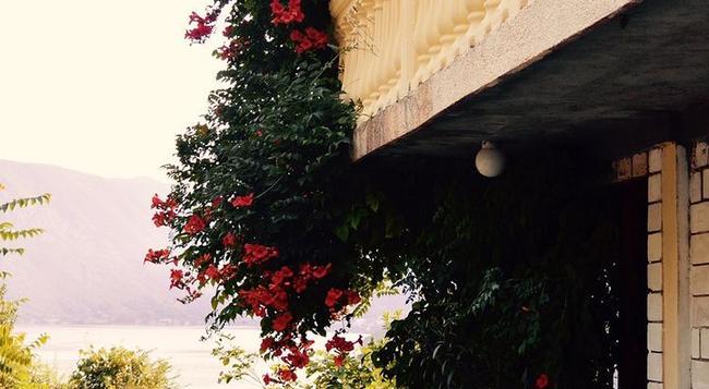 Guesthouse Villa Luna Risan - Kotor - Building