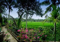 Alam Jiwa - Ubud - Outdoor view